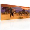 Canvas Print : March of african elephants HQ prints