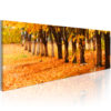 Canvas Print : Park covered with golden leaves HQ prints