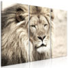 Canvas Print : The King of Beasts (3 Parts) Beige HQ prints