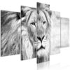 Canvas Print : The King of Beasts (5 Parts) Wide Black and White HQ prints