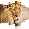 Canvas Print : The King of Beasts (5 Parts) Wide Orange HQ prints